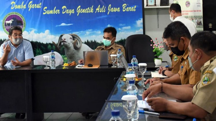 DPRD Jabar Dorong Pemprov Kembangkan Kelompok Ternak Domba